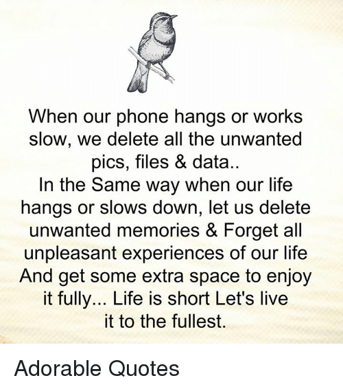 When Our Phone Hangs Or Works Slow We Delete All The Unwanted Pics