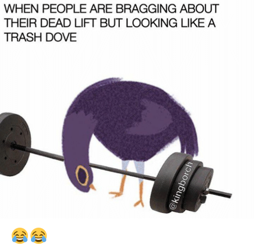 Dove, Lift, and Doves: WHEN PEOPLE ARE BRAGGING ABOUT  THEIR DEAD LIFT BUT LOOKING LIKE A  TRASH DOVE 😂😂