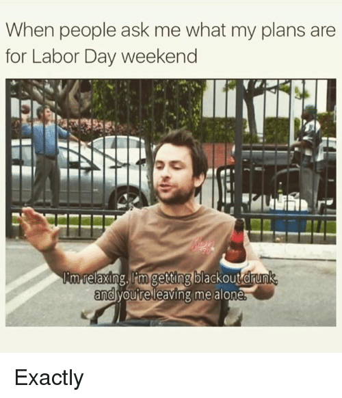 Being Alone, Drunk, and Memes: When people ask me what my plans are  for Labor Day weekend  morelaxing, getting blackout drunk  and  youre leaving me alone Exactly