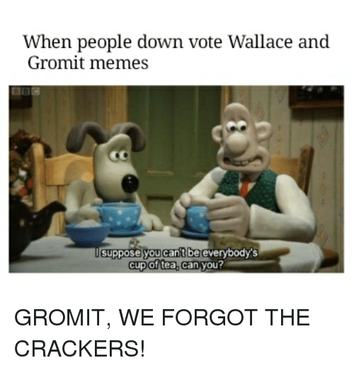 When People Down Vote Wallace And Gromit Memes Suppose You Cant Be