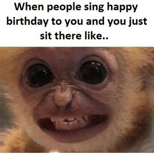 25+ Best Memes About Funny, Happy Birthday, And Singing