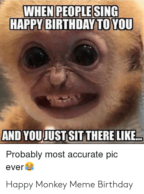 Birthday, Meme, and Happy Birthday: WHEN PEOPLE SING  HAPPY BIRTHDAY TO YOU  AND YOUJUST SIT THERE LIKE...  Probably most accurate pic  ever Happy Monkey Meme Birthday