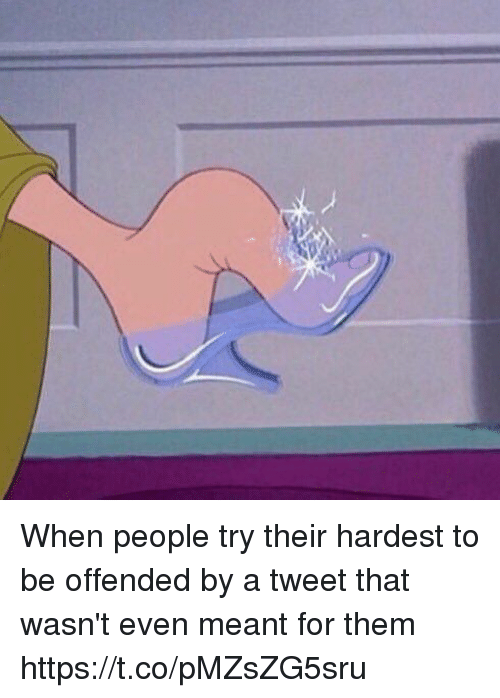 Girl Memes, Tweet, and Them: When people try their hardest to be offended by a tweet that wasn't even meant for them https://t.co/pMZsZG5sru