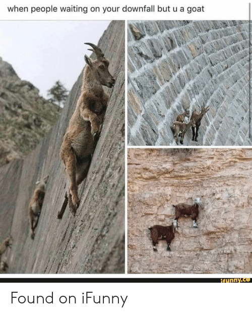 Goat, Waiting..., and Downfall: when people waiting on your downfall but u a goat  ifunny.co Found on iFunny