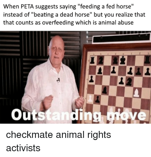 """Peta, Animal, and Horse: When PETA suggests saying """"feeding a fed horse""""  instead of """"beating a dead horse"""" but you realize that  that counts as overfeeding which is animal abuse  outstanding ove  ing, checkmate animal rights activists"""