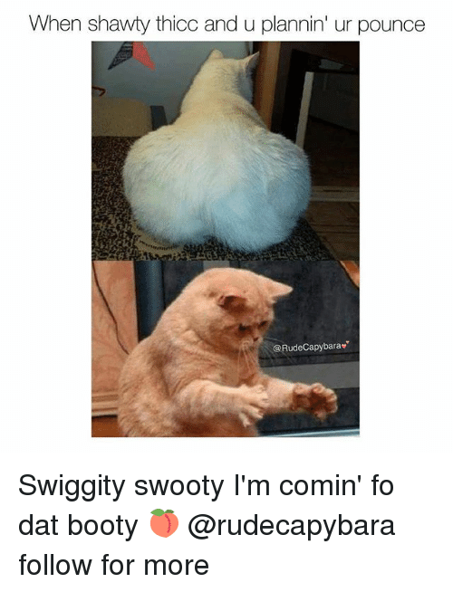 When Shawty Thicc And U Plannin Ur Pounce Swiggity Swooty I M Comin Fo Dat Booty Follow For More Booty Meme On Me Me #dog #excited #pup #im so excited #swiggity #swooty #swiggity swooty. when shawty thicc and u plannin ur