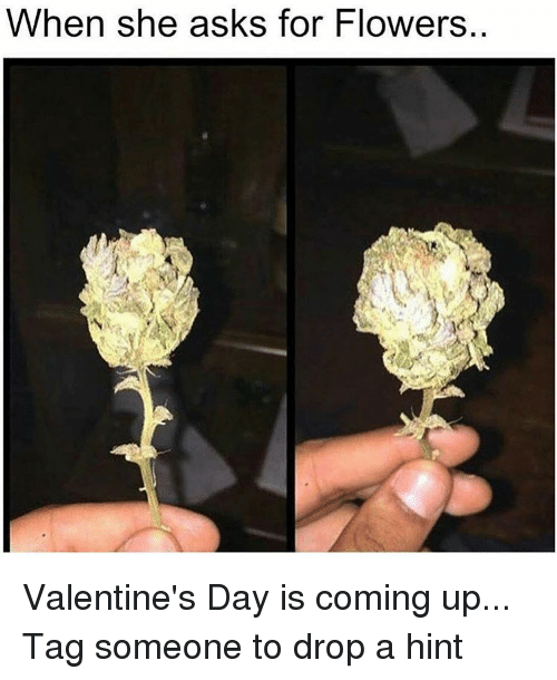 When She Asks For Flowers Valentine S Day Is Coming Up Tag Someone