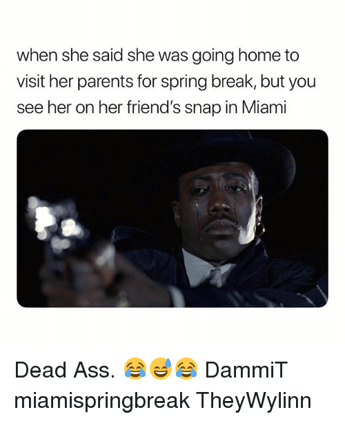 Ass, Friends, and Parents: when she said she was going home to  visit her parents for spring break, but you  see her on her friend's snap in Miami Dead Ass. 😂😅😂 DammiT miamispringbreak TheyWylinn