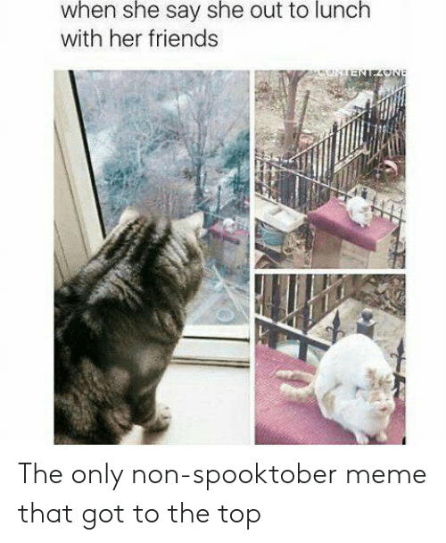 Friends, Meme, and Got: when she say she out to lunch  with her friends  ENEAONE The only non-spooktober meme that got to the top
