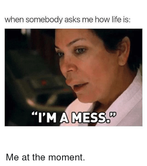 "Kardashian, Celebrities, and Hows Life: when somebody asks me how life is:  DD  ""I'M AMESS Me at the moment."