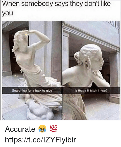 Bitch, Fuck, and They: When somebody says they don't like  you  Searching for a fuck to give  Is that a lil bitch I hear? Accurate 😂 💯 https://t.co/IZYFlyibir