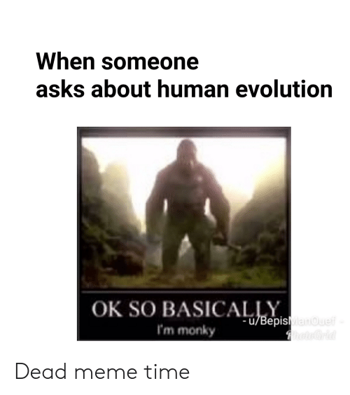 Meme, Reddit, and Evolution: When someone  asks about human evolution  OK SO BASICAepisMaouelf  I'm monky  hoteGrid Dead meme time