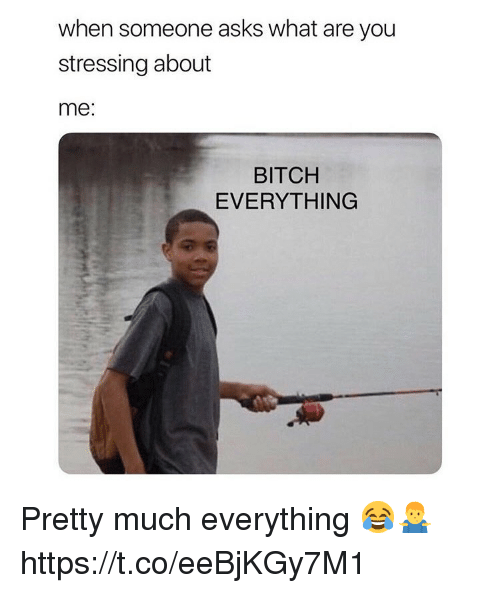 Bitch, Asks, and You: when someone asks what are you  stressing about  me:  BITCH  EVERYTHING Pretty much everything 😂🤷‍♂️ https://t.co/eeBjKGy7M1