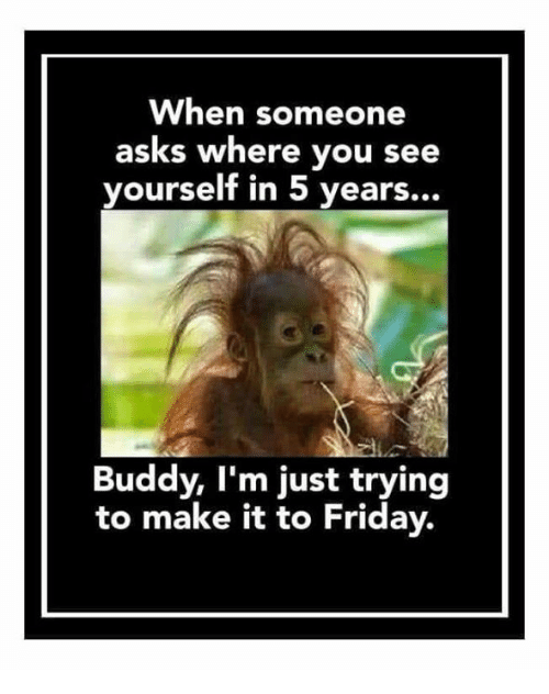 Friday, Memes, and Asks: When someone  asks where you see  yourself in 5 years...  Buddy, I'm just trying  to make it to Friday.