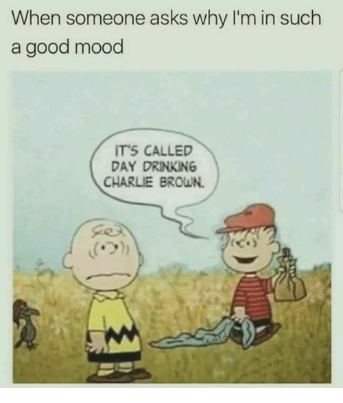 Charlie, Drinking, and Memes: When someone asks why I'm in such  a good mood  ITS CALLED  DAY DRINKING  CHARLIE BROWN.
