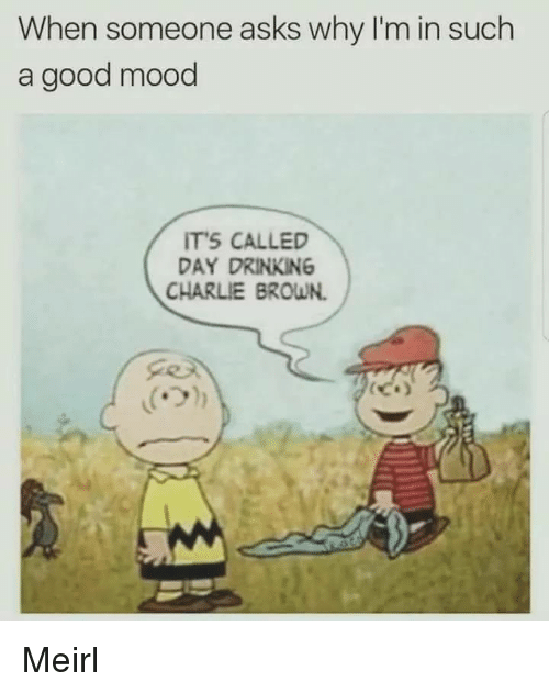 Charlie, Drinking, and Mood: When someone asks why I'm in such  a good mood  TS CALLED  DAY DRINKING  CHARLIE BROWN. Meirl