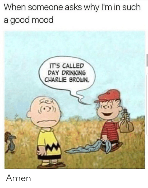 Charlie, Drinking, and Mood: When someone asks why I'm in such  a good mood  IT'S CALLED  DAY DRINKING  CHARLIE BROWN.  .(ウ)) Amen
