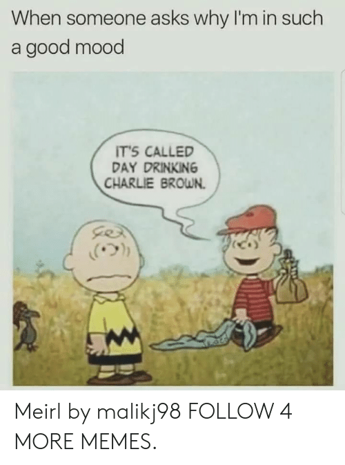 Charlie, Dank, and Drinking: When someone asks why I'm in such  a good mood  IT'S CALLED  DAY DRINKING  CHARLIE BROWN Meirl by malikj98 FOLLOW 4 MORE MEMES.