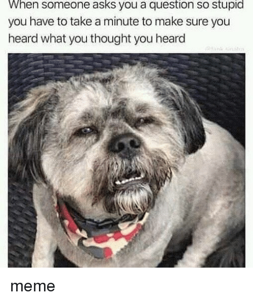 Meme, Thought, and Asks: When someone asks you a question so stupid  you have to take a minute to make sure you  heard what you thought you heard meme