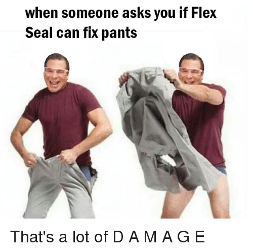 Flexing, Reddit, and Seal: when someone asks you if Flex  Seal can fix pants