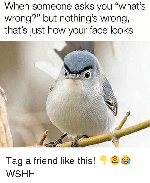 """Memes, Wshh, and Asks: When someone asks you """"what's  wrong?"""" but nothing's wrong,  that's just how your face looks Tag a friend like this! 👇😩😂 WSHH"""