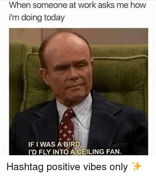 Work, Today, and Girl Memes: When someone at work asks me how  i'm doing today  IF I WAS A BIRD  'D FLY INTO A CEILING FAN. Hashtag positive vibes only ✨