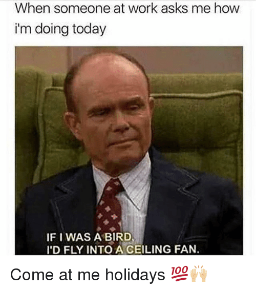 Memes, Work, and Today: When someone at work asks me how  i'm doing today  IF I WAS A BIRD  I'D FLY INTO A CEILING FAN. Come at me holidays 💯🙌🏼
