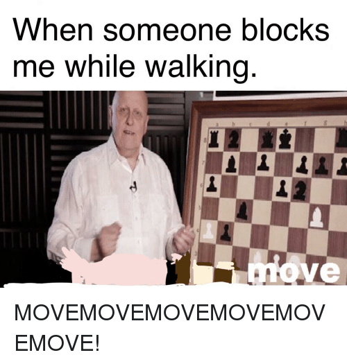 When Someone Blocks Me While Walking Ve | Reddit Meme on ME ME