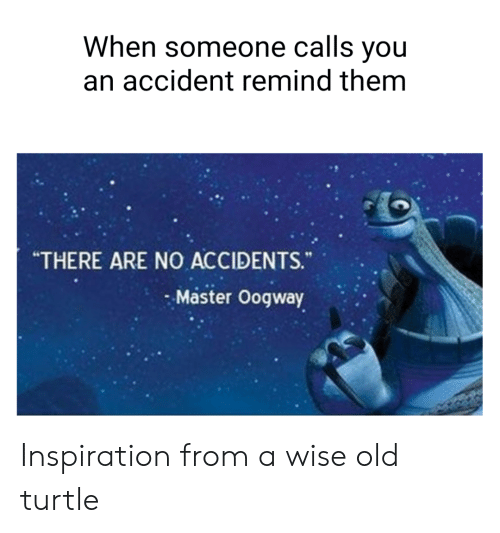 Turtle, Old, and Inspiration: When someone calls you  an accident remind them  THERE ARE NO ACCIDENTS.  Master Oogway Inspiration from a wise old turtle
