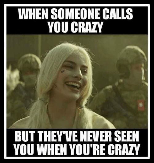 Crazy, Funny, and Never: WHEN SOMEONE CALLS  YOU CRAZY  BUT THEYVE NEVER SEEN  YOU WHEN YOU'RE CRAZY