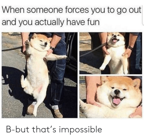 Fun, You, and Impossible: When someone forces you to go out  and you actually have fun B-but that's impossible