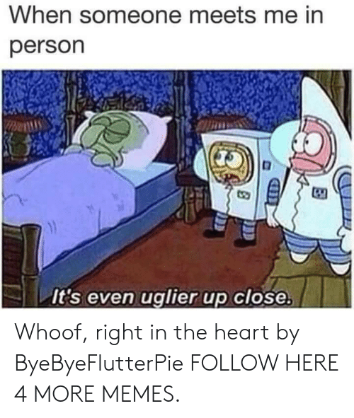 Dank, Memes, and Target: When someone meets me in  person  It's even uglier up close, Whoof, right in the heart by ByeByeFlutterPie FOLLOW HERE 4 MORE MEMES.