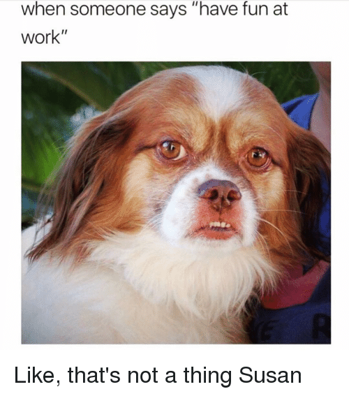 """Work, Girl Memes, and Fun: when someone says """"have fun at  work"""" Like, that's not a thing Susan"""