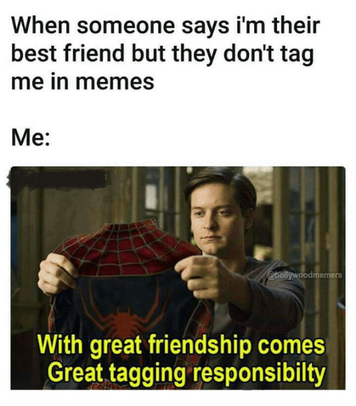 Best Friend, Memes, and Best: When someone says i'm their  best friend but they don't tag  me in memes  Me:  @bollywoodmemers  With great friendship comes  Great tagging responsibilty