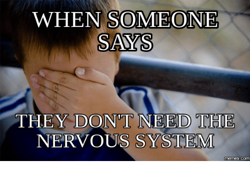 when someone says they dont need the nervous system memes com 18290922 when someone says they dont need the nervous system memescom