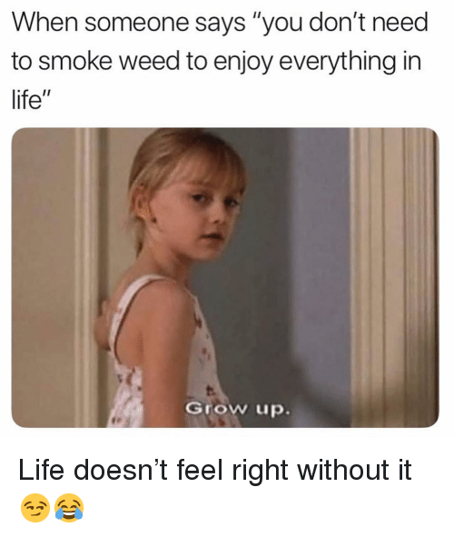 "Funny, Life, and Weed: When someone says ""you don't need  to smoke weed to enjoy everything in  life""  Grow up. Life doesn't feel right without it 😏😂"