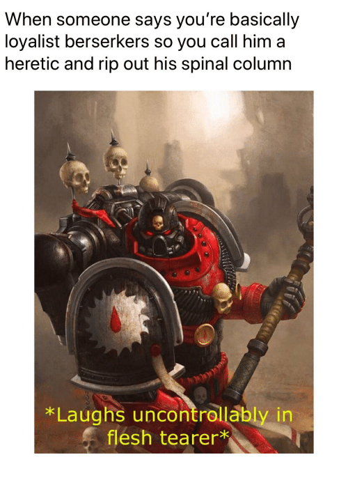 When Someone Says You're Basically Loyalist Berserkers So You Call