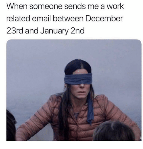Work, Email, and Girl Memes: When someone sends me a work  related email between December  23rd and January 2nd