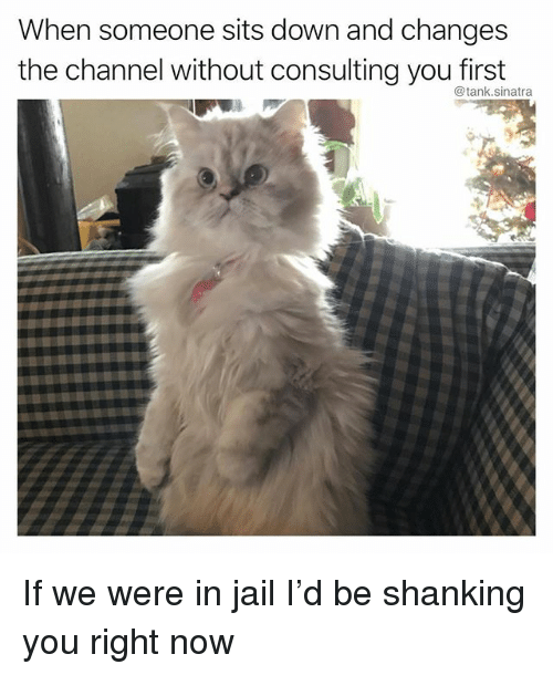 Funny, Jail, and Tank: When someone sits down and changes  the channel without consulting you first  @tank.sinatra If we were in jail I'd be shanking you right now