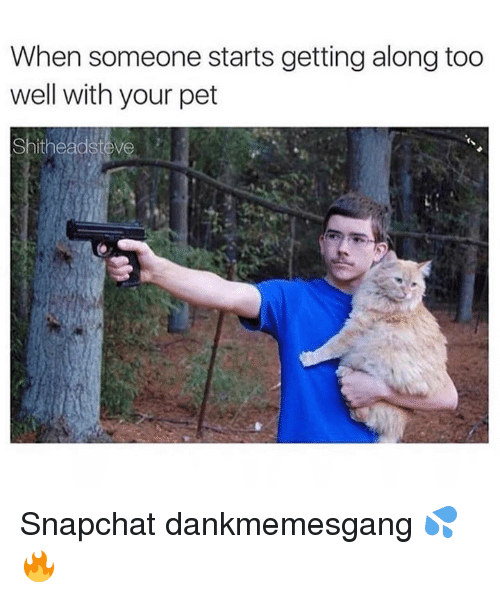 Memes, Snapchat, and 🤖: When someone starts getting along too  well with your pet  Shitheadste Snapchat dankmemesgang 💦🔥