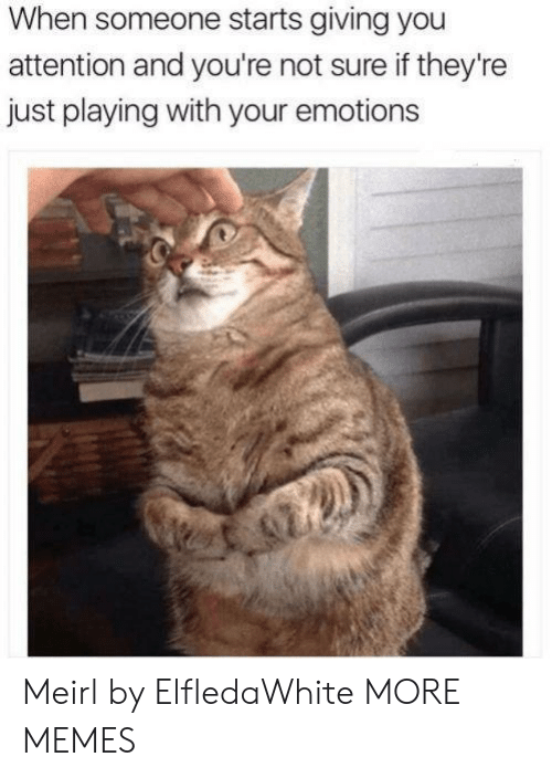 Dank, Memes, and Target: When someone starts giving you  attention and you're not sure if they're  just playing with your emotions Meirl by ElfledaWhite MORE MEMES