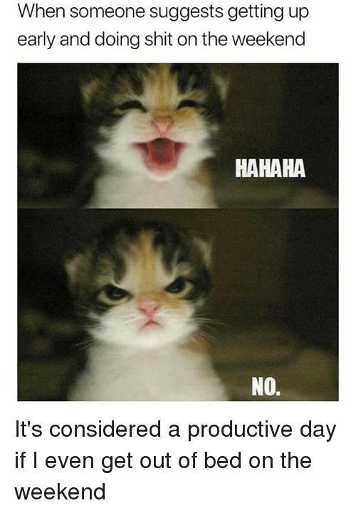 Shit, The Weekend, and Girl Memes: When someone suggests getting up  early and doing shit on the weekend  HAHAHA  NO. It's considered a productive day if I even get out of bed on the weekend