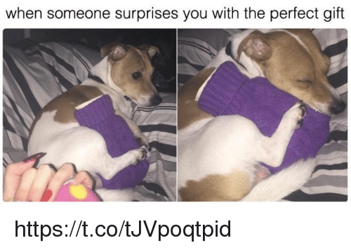 Memes, 🤖, and You: when someone surprises you with the perfect gift https://t.co/tJVpoqtpid