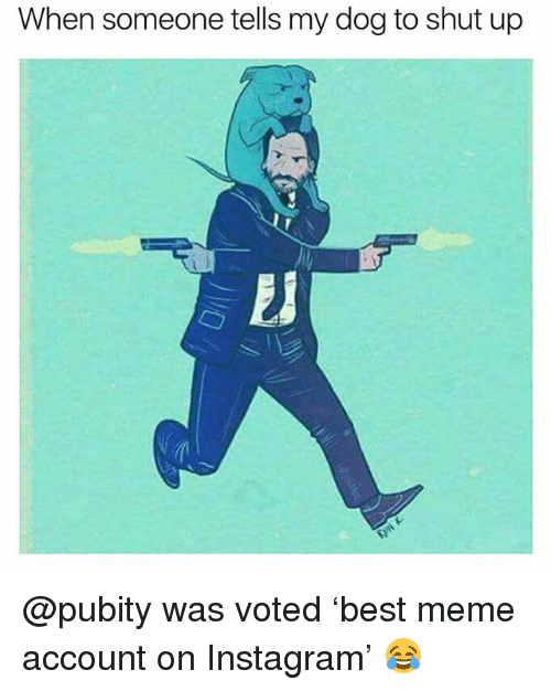 Funny, Instagram, and Meme: When someone tells my dog to shut up @pubity was voted 'best meme account on Instagram' 😂