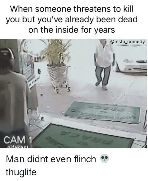 Funny, Memes, and Comedy: When someone threatens to kill  you but you've already been dead  on the inside for years  @insta comedy  CAM 1  gifak net Man didnt even flinch 💀 thuglife