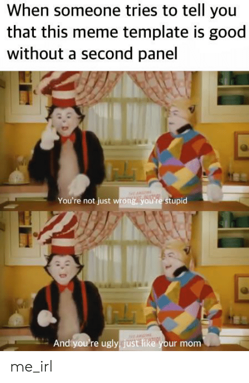 Cat In The Hat Youre Not Just Wrong Youre Stupid - Best ...