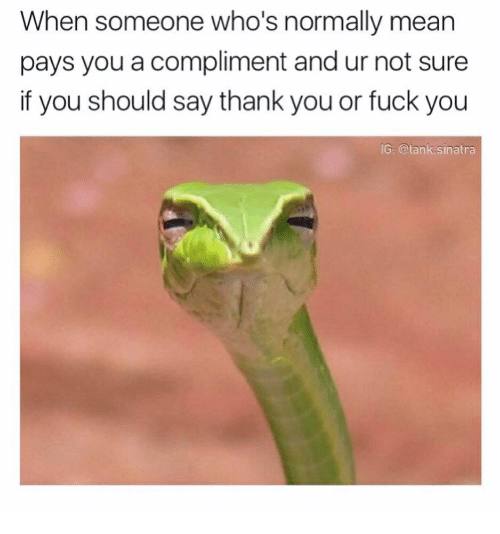 Fuck You, Thank You, and Fuck: When someone who's normally mean  pays you a compliment and ur not sure  if you should say thank you or fuck you  G: @tank.sinatra