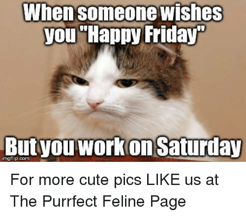 25+ Best Memes About Work Saturday | Work Saturday Memes