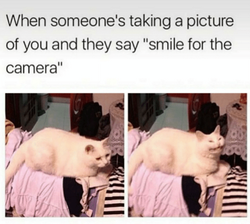 """Camera, Smile, and A Picture: When someone's taking a picture  of you and they say """"smile for the  camera"""