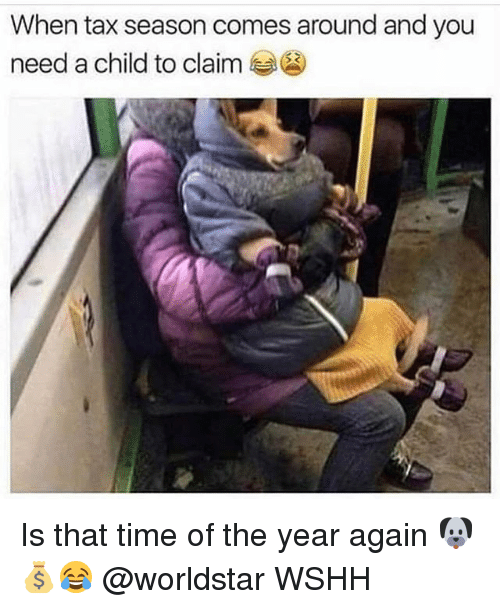 Memes, Worldstar, and Wshh: When tax season comes around and you  need a child to claim Is that time of the year again 🐶💰😂 @worldstar WSHH
